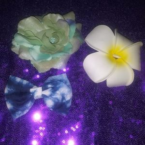 Nwot Lot of 3 hair clips